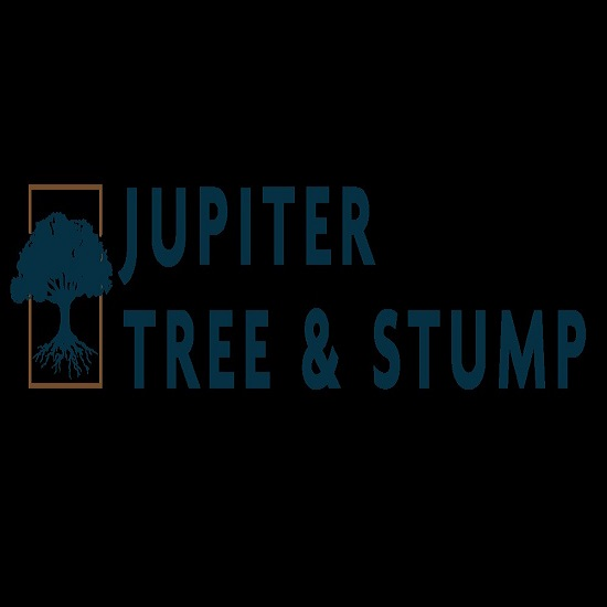 Jupiter Tree and Stump