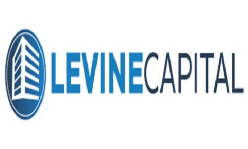 Levine Capital Management, LLC