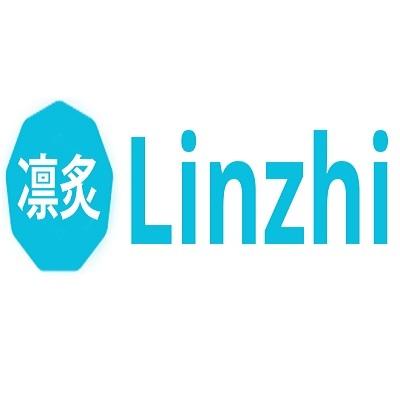Linzhi LTD