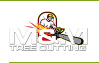 Tree Service Cutting & Removal