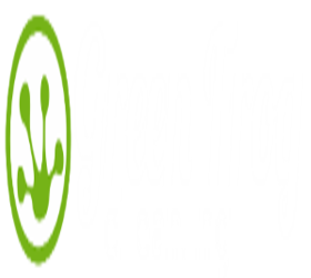 Green Frog Cleaning