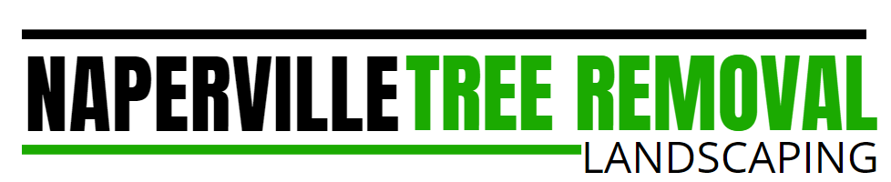 Naperville Tree Removal & Landscaping Pros