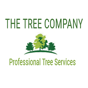 The Tree Company | Professional Tree Services North Shore Auckland