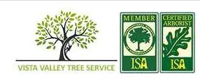 Escondido Tree Service Experts