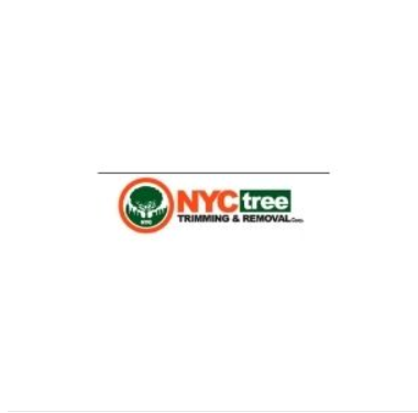 NYC Tree Trimming & Removal Corp
