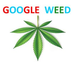 Google Weed Delivery