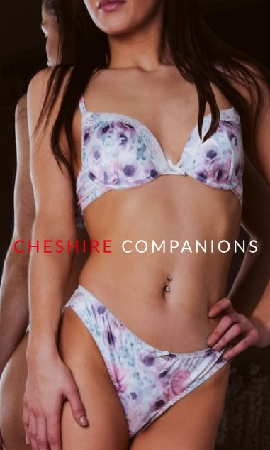https://www.cheshirecompanions.com