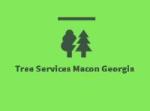 Tree Services Macon Georgia