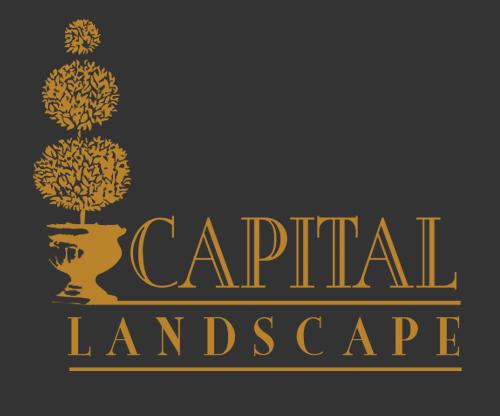 Capital Landscape