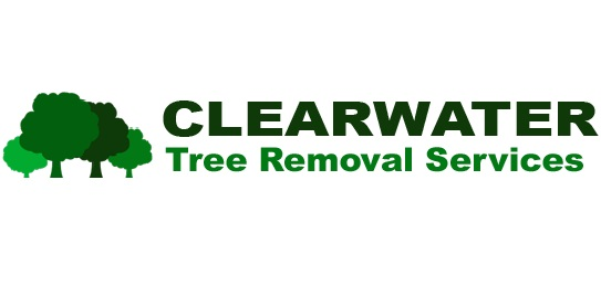 Clearwater Tree Removal Services
