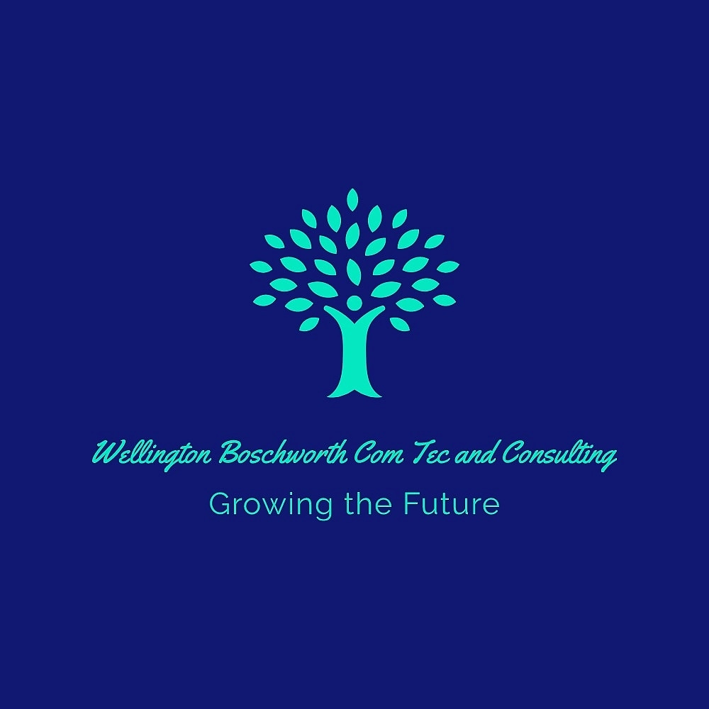 WBCTC1 Wellington Boschworth Commercial Technologies and Consulting