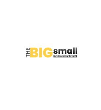 The Big Small Digital Marketing Agency