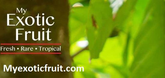 Myexoticfruits