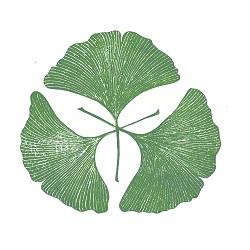 Ginkgo Natural Health