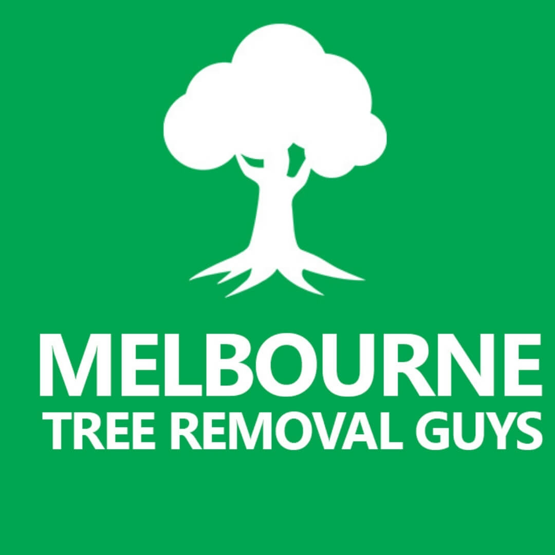 Melbourne Tree Removal Guys
