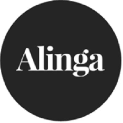 Alinga Web Design