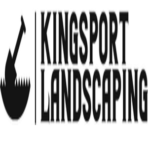 The Expert Kingsport Landscaping company