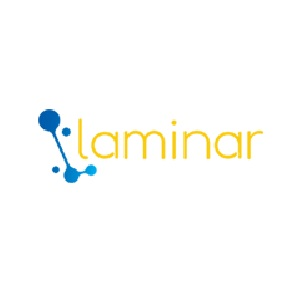 Laminar Consulting