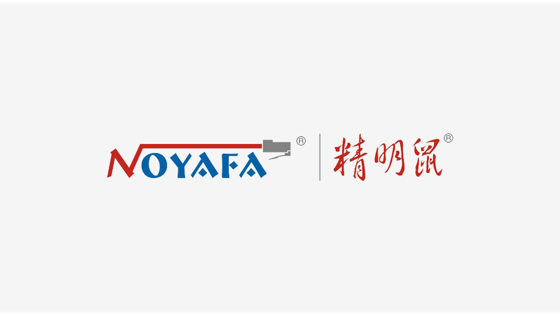 Shenzhen Noyafa Electronic Co.,LTD.