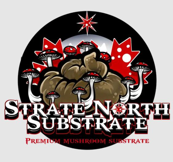 Strate North Substrate