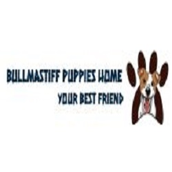 Roberts Bullmastiff Home
