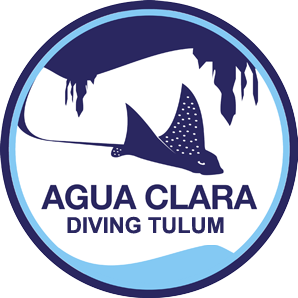 Agua Clara Diving Tulum