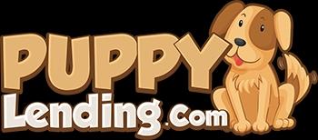Puppy Lending