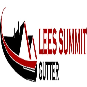 Lee's Summit Gutter