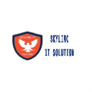 Skylinc IT Solution