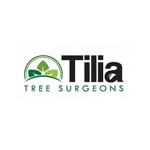 Tilia Tree Surgeons