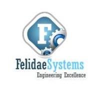 Felidae System