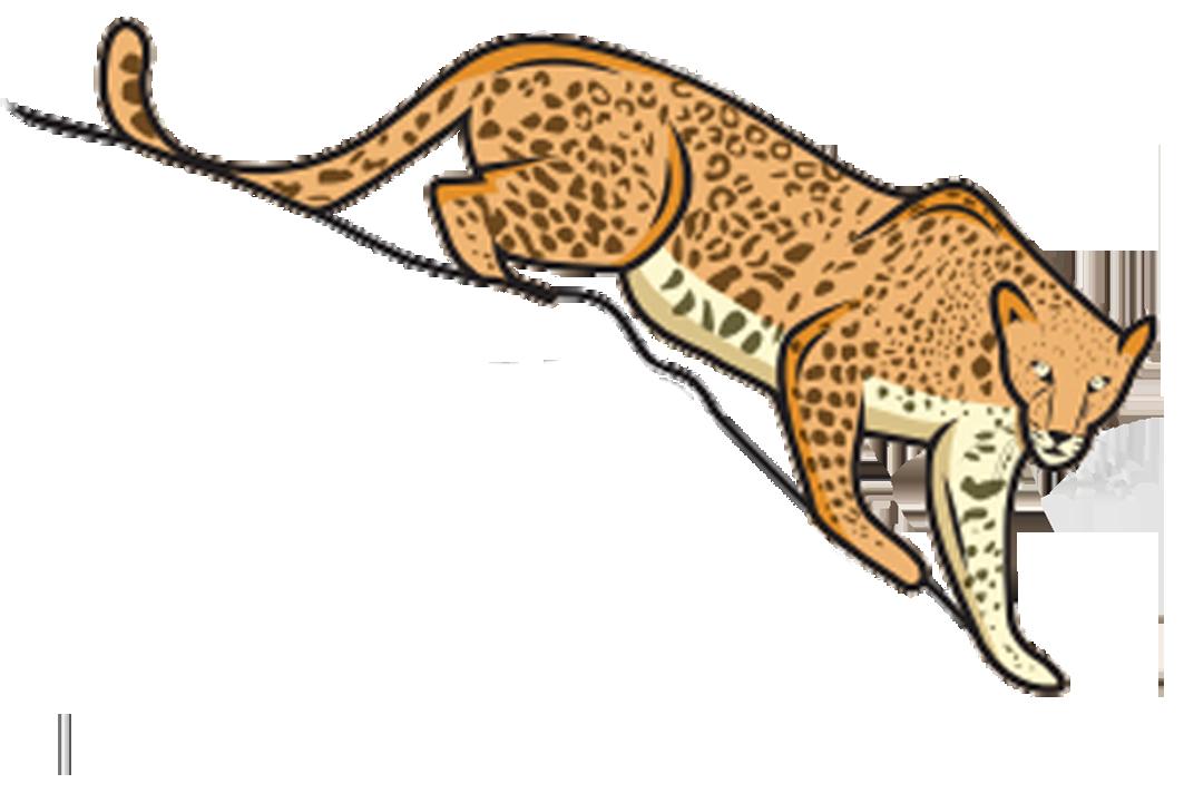 jawai safari
