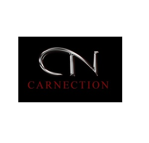 CarNection Auto Group