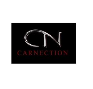 CarNection Auto Group