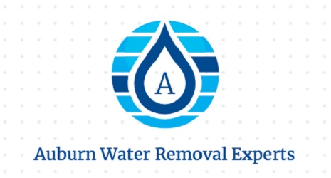 Auburn Water Removal Experts