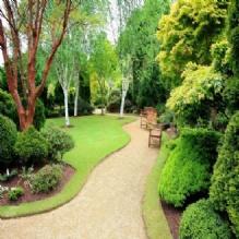 Polk Lawn