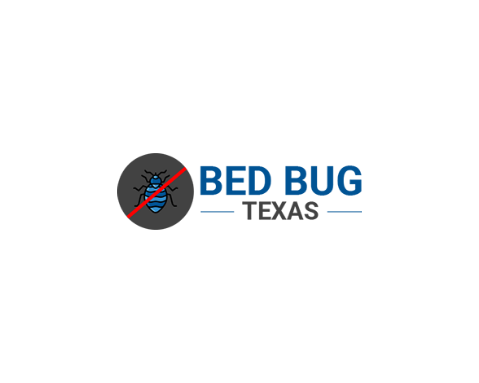 Bed Bug Texas