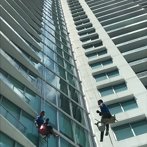 Top Job Window Cleaning Service