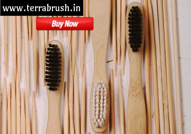 TerraBrush