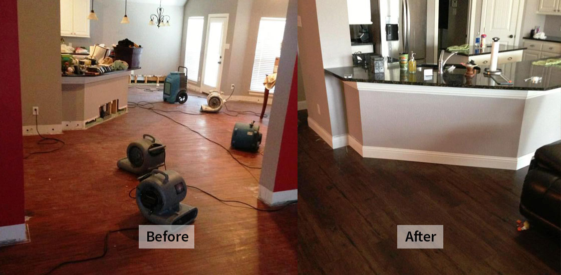 Water Damage Restoration Chippendale