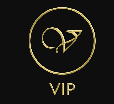 VIP Livery Services