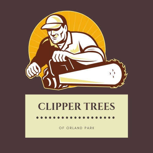 Clipper Tree Service of Orland Park