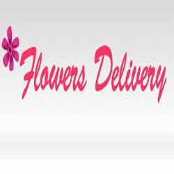Same Day Flower Delivery Tampa FL - Send Flowers