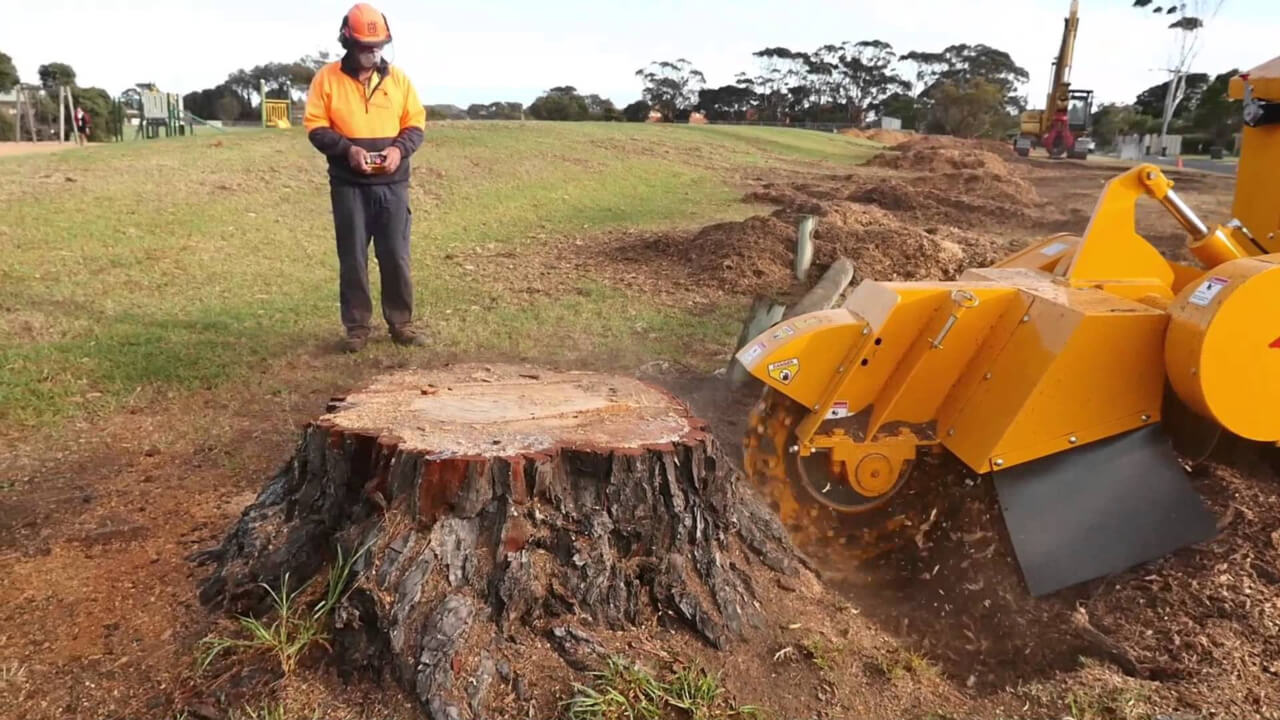 Machine Stump Removal