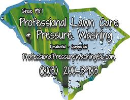 Professional Lawn Care & Pressure Washing