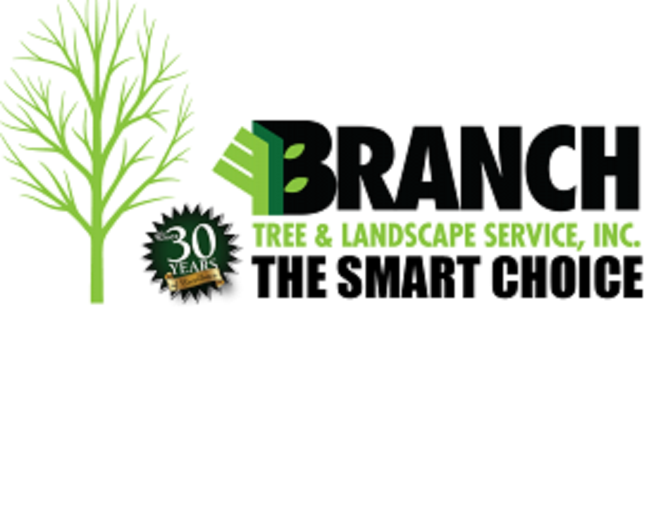 Branch Tree & Landscape Service