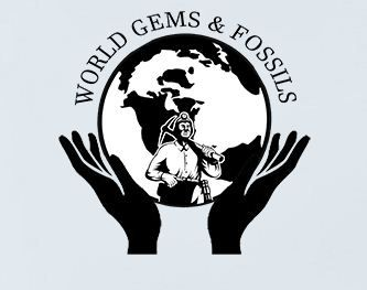 World Gems & Fossils