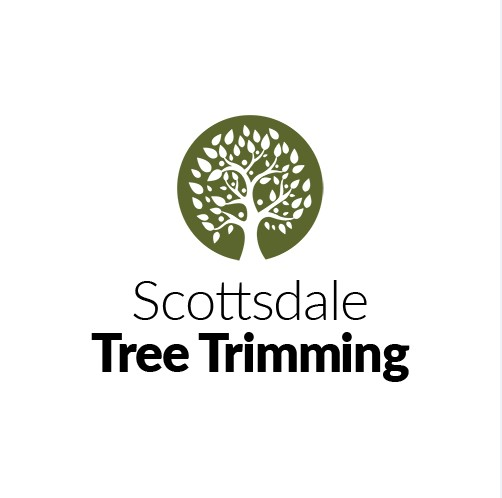 Scottsdale Tree Trimming