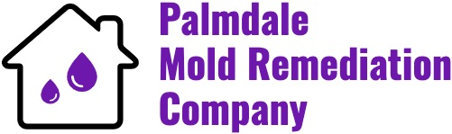 Palmdale Mold Remediation Company